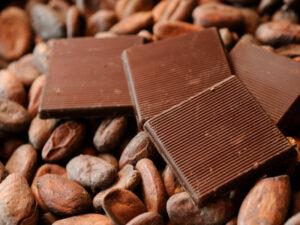 Alprose Chocolate Museum